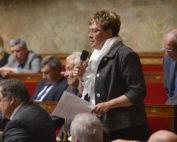 Marianne Dubois Assemblée hémicycle